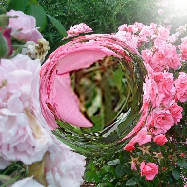 Bubbled Nature